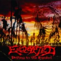 """Encrypted """"Drifting to the Impaled"""" CD"""