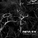 """Devlsy """"A Parade of States"""" CD"""