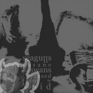 Seagulls Insane And Swans Deceased Mining Out The Void CD